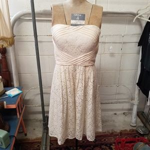 Vince Camuto Size 6 Strapless Cream Lace Dress